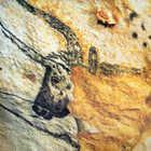 Cave Painting, Lascaux, Dordogne, France
