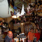 Wine Bar with Bras on Ceiling, Volterra, Tuscany, Italy